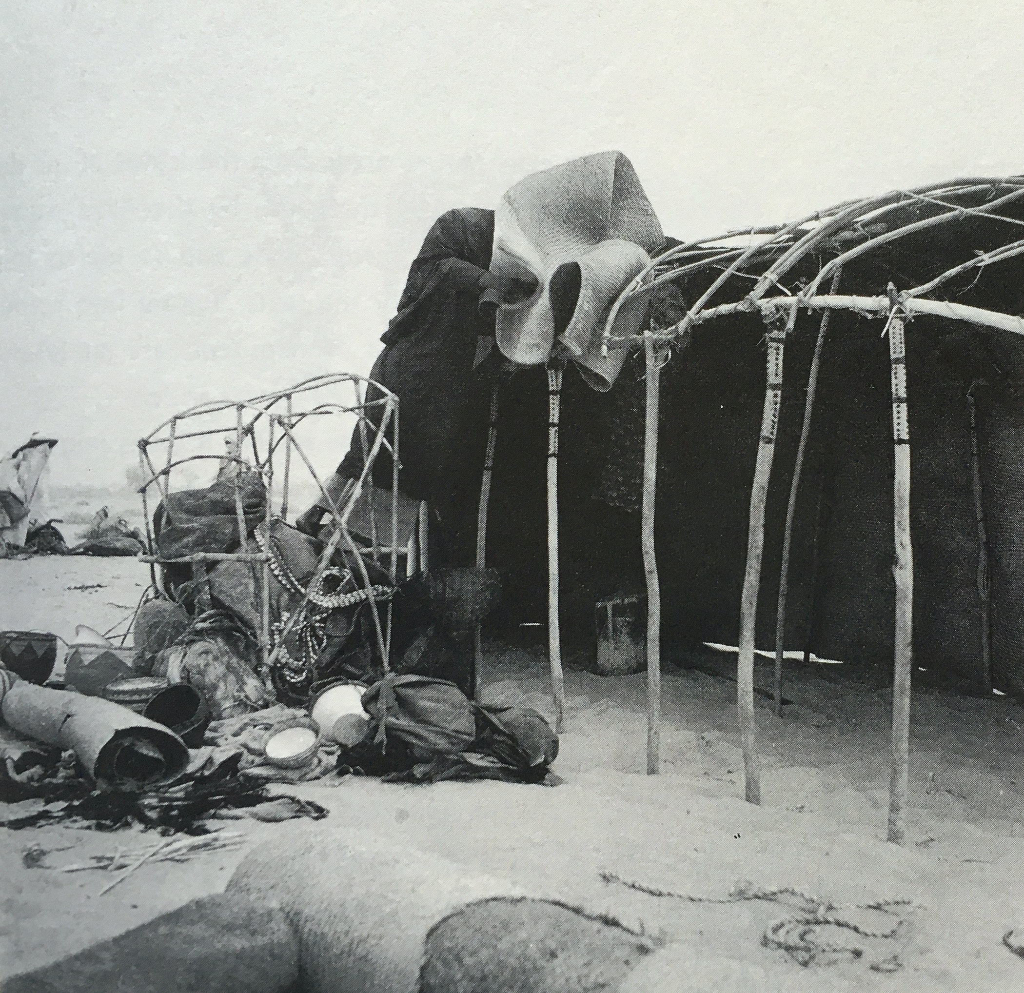 A Tubu woman constructing her tent in the northern Ennedi region of Chad