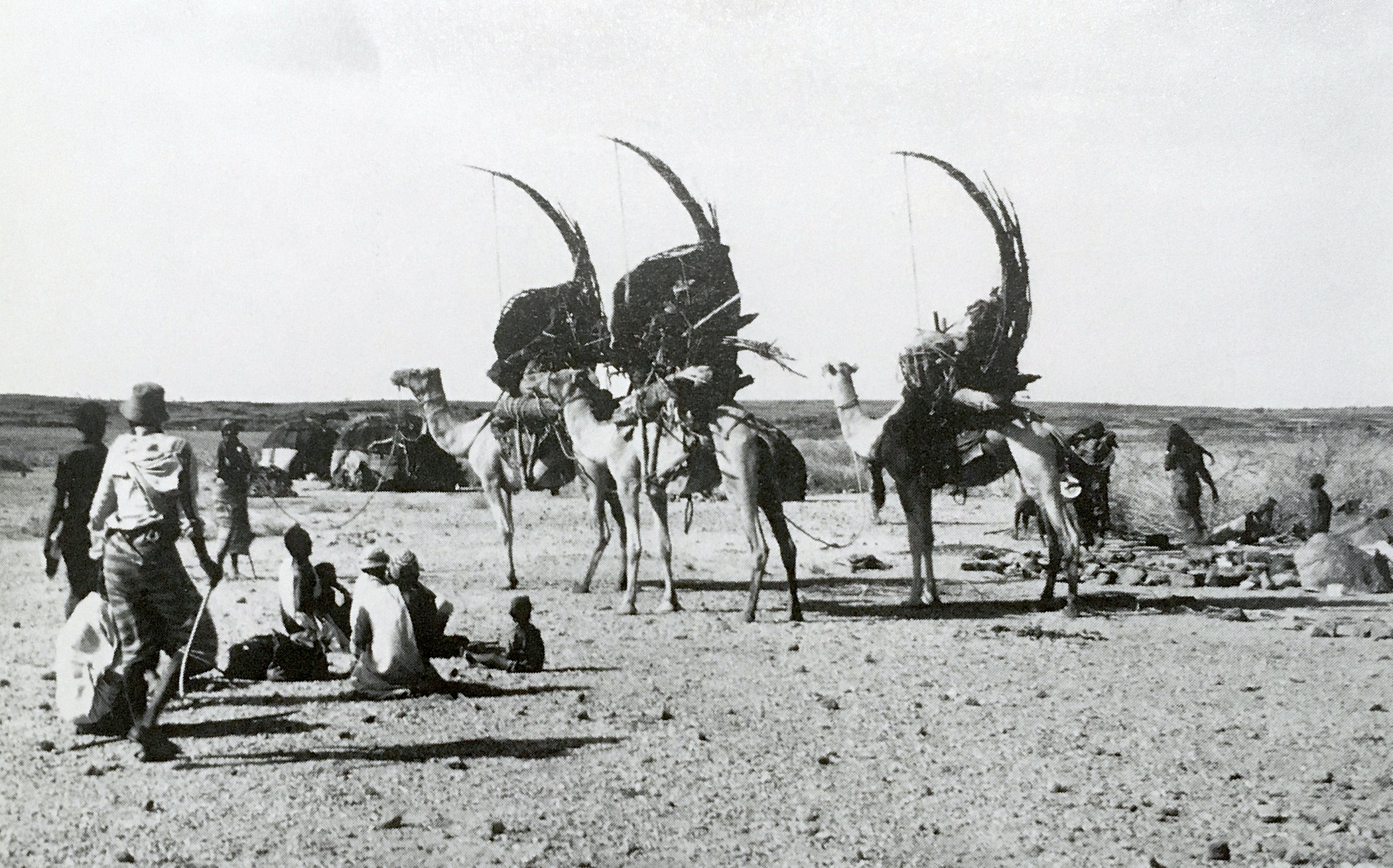 Gabra women securing tent elements that have been reconfigured to form the camel litter armature, northern Kenya, photograph by Labelle Prussin, published in Labelle Prussin, African Nomadic Architecture: Space, Place and Gender